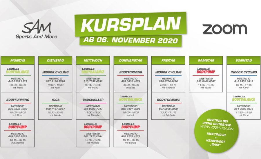 Zoom-Kurse im November